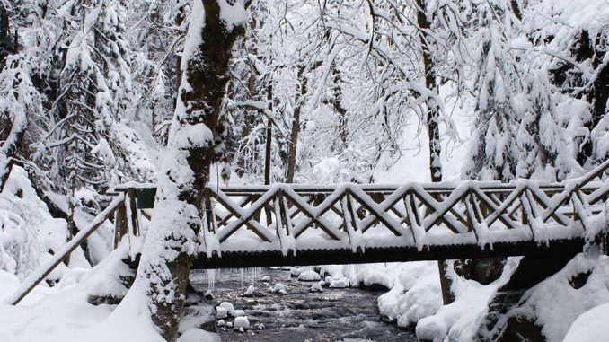 Trebro om vinteren