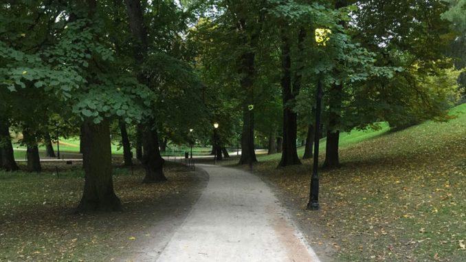 Vei i parken