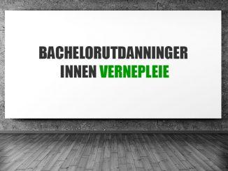 Bachelorutdanninger