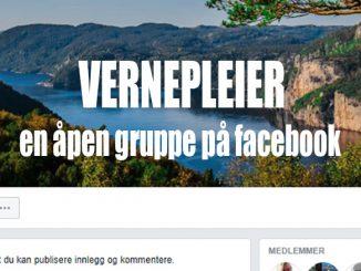 Vernepleier-åpen gruppe på facebook