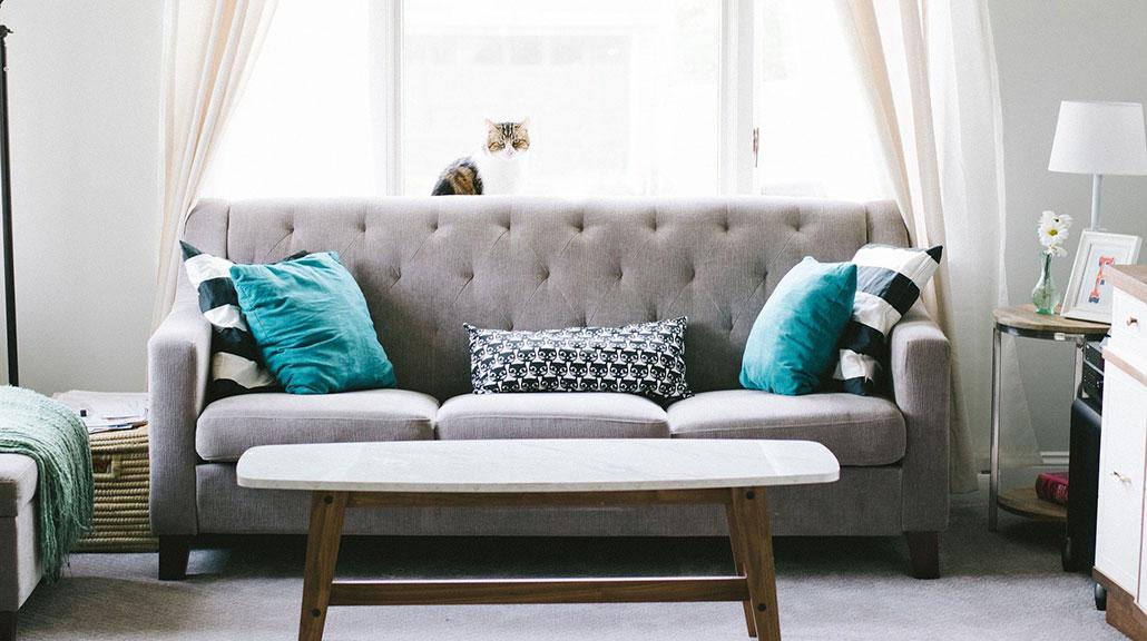Stue med sofa og turkise puter